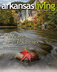 Link to current issue of Arkansas Living
